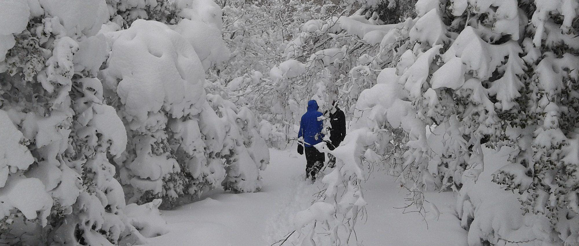 Nieve en Azuelo Navarra